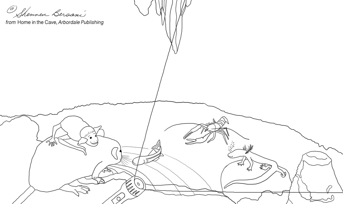 Blind catfish in cave coloring page.  Shennen Bersani