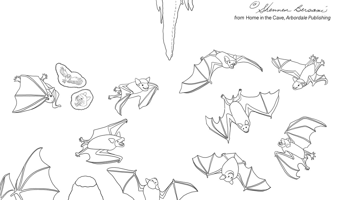 Baby bats in a cave coloring page.  Shennen Bersani