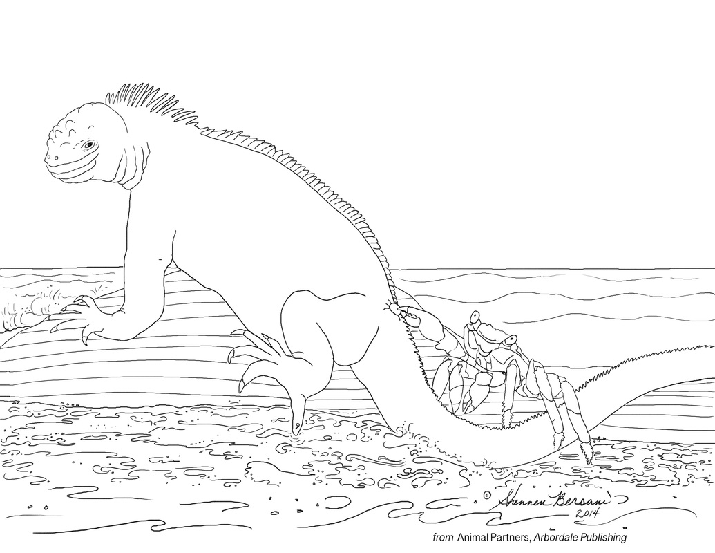 Sally Lightfoot and Marine Iguana Animal Partners coloring page Shennen Bersani