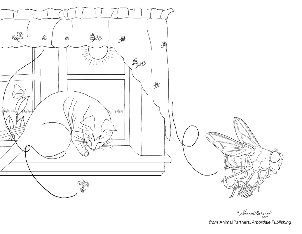 Bottle fly and false scorpion Animal Partners coloring page Shennen Bersani