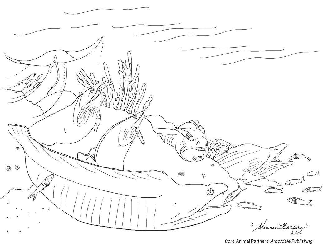 cleaning station, cleaner fish and moray eels Animal Partners coloring page Shennen Bersani